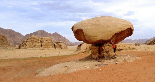 mushroom desert jordan