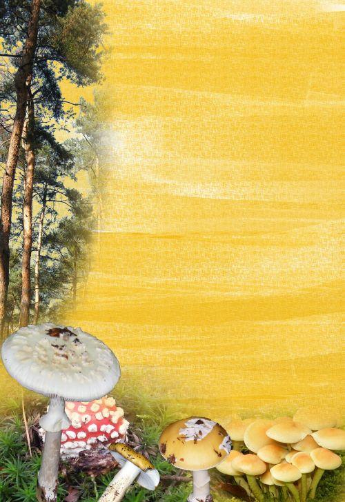 mushroom forest stationery background