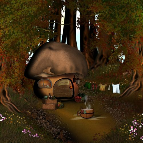 mushroom house forest mushroom