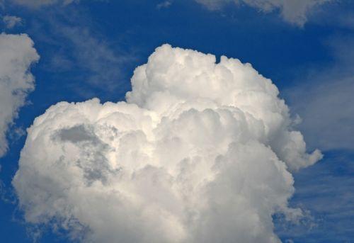 Mushroom Shaped Cloud