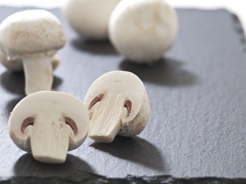 mushrooms meadow delicious