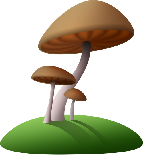 mushrooms island cartoon