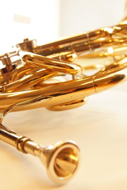 music horn musical instrument