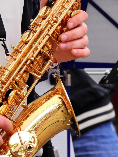 music musician instrument