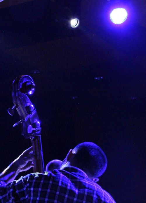 muzika,įvykis,menas,Meksikas,talentas,aš esu studentė,poveikis,elegancija,instrumentas