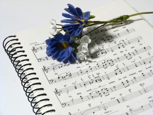 music script design