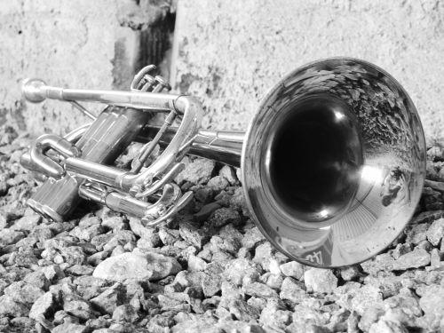 music instrument trumpet