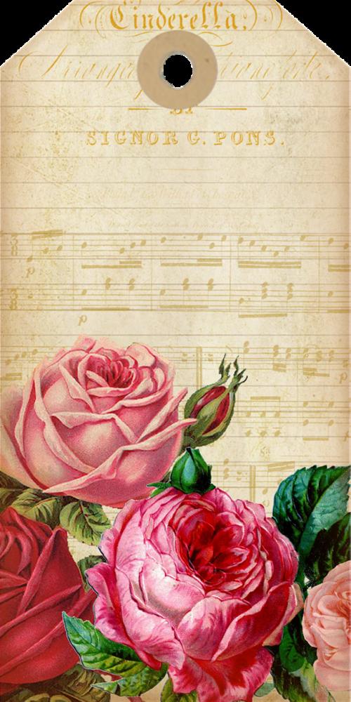 music sheet feminine