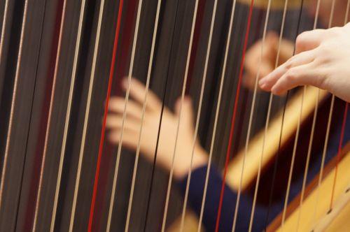 musical instrument harp concert harp