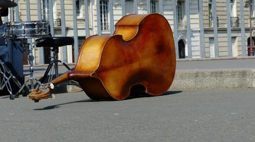 musical instrument double bass road
