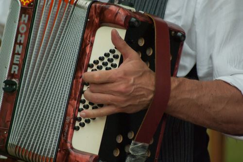 musician accordion music