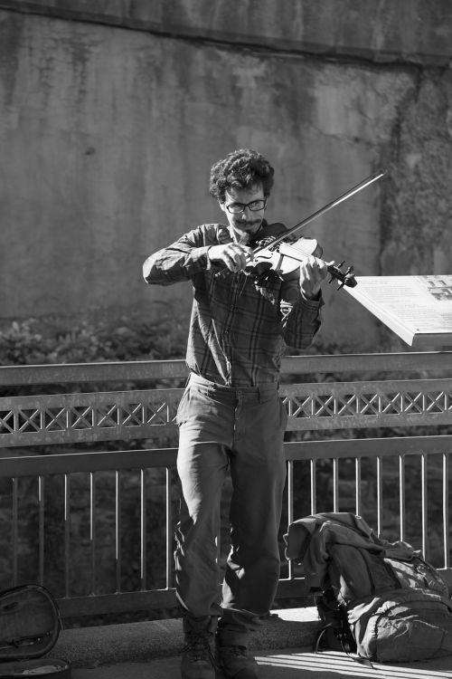 musician violin street musician