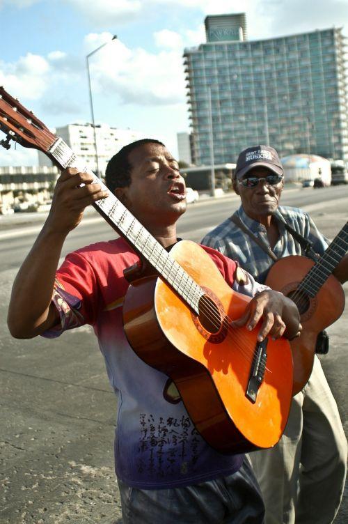 musician music instrument