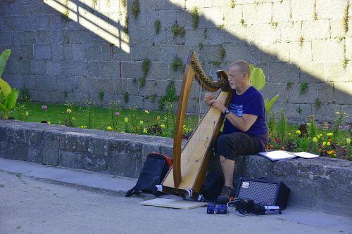 musician music harp