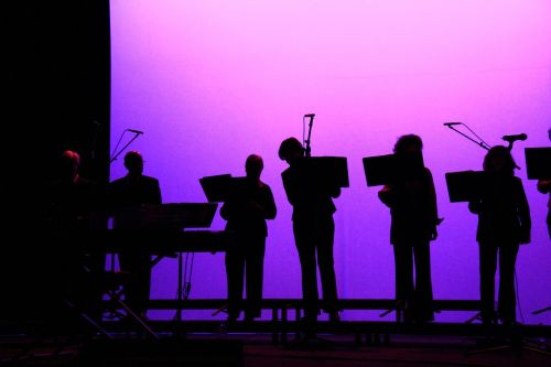 musicians orchestra shadow