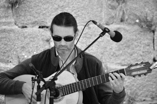 Musician Guitarist