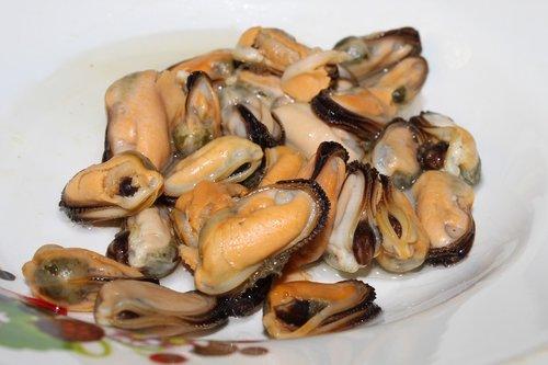 mussels  shellfish  butter