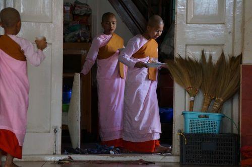myanmar burma buddhist nuns
