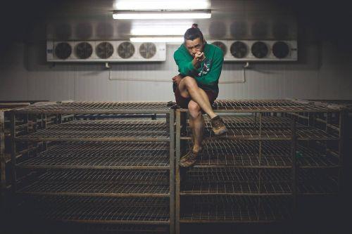 myself freezer fans