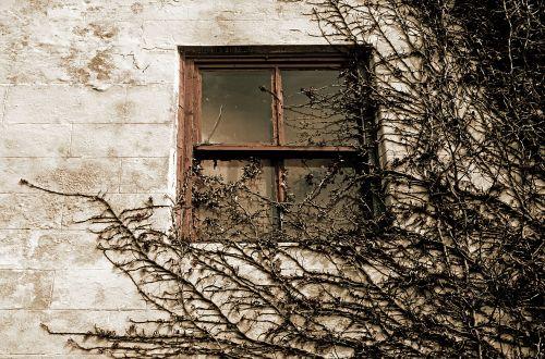 Mysterious Window