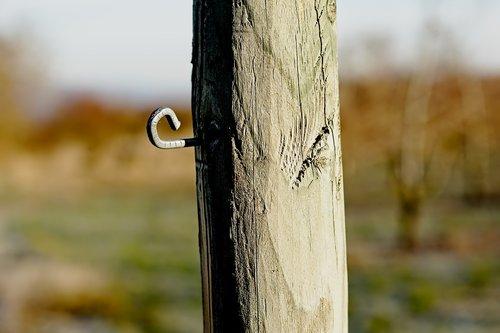 nail  hook  wood