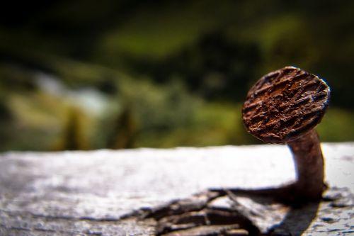 nail wood rusty nage