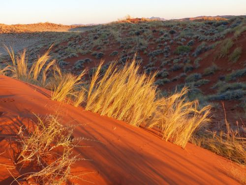 namib desert roter sand color games