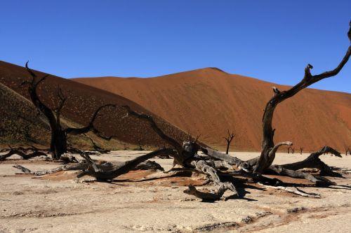 Namibija,Sossusvlei,kopos,gamta,kalvos