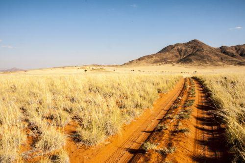 Namibija,wolwedans,namib kraštas,dykuma,toli,smėlis,gamta,kopos