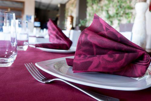 napkin non woven restaurants