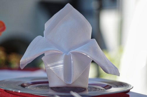 napkin  table  wedding
