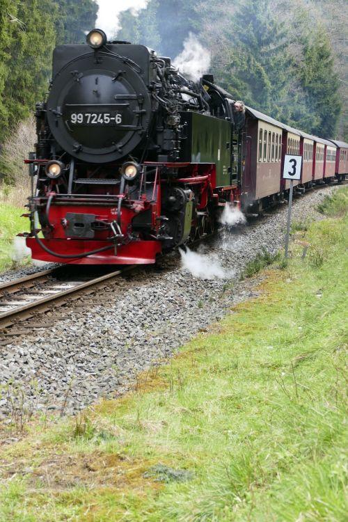 narrow gauge harzquerbahn nature