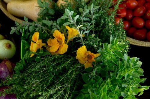 nasturtium thyme herbs