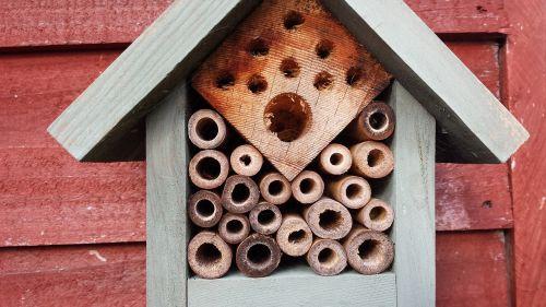 natural bees wood