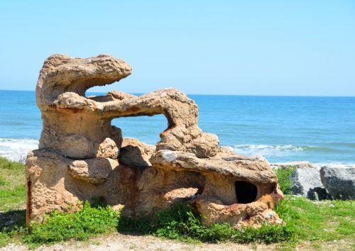 Natural Coral Reef Sculpture
