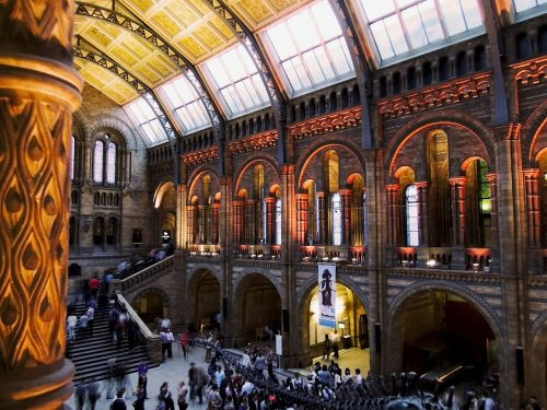 natural history museum london architecture