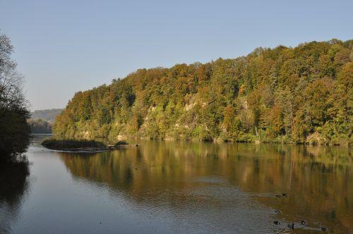 gamtos kraštovaizdis,gamta,upės kraštovaizdis,vanduo,kraštovaizdis,upė,Šveicarija,rinas,žalias
