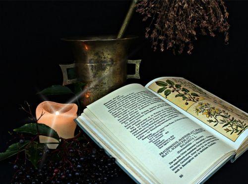 natural medicine alchemy herbs