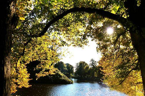 gamta,ruduo,medžiai,vanduo,saulėtas