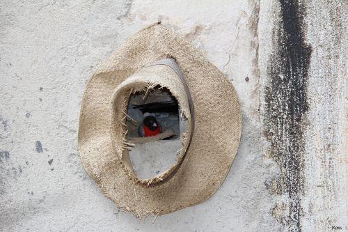 nature shelter hat