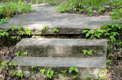 nature steps outdoor