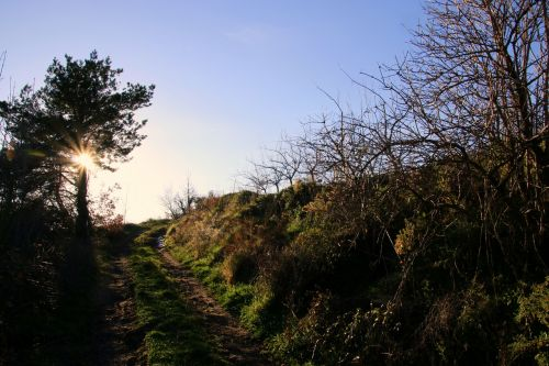 nature hike trail