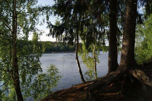 pestovo reservoir tishkovo moscow region