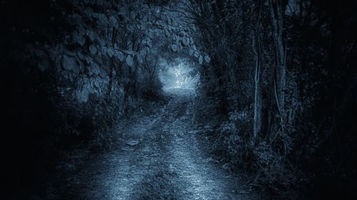 nature road mystic