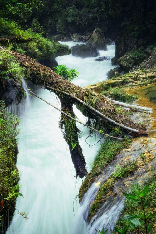 nature guatemala semucchampey