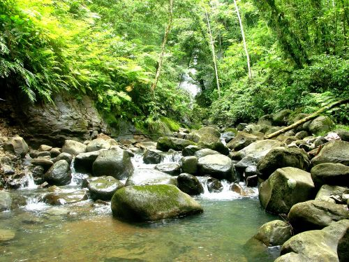 nature river cocos