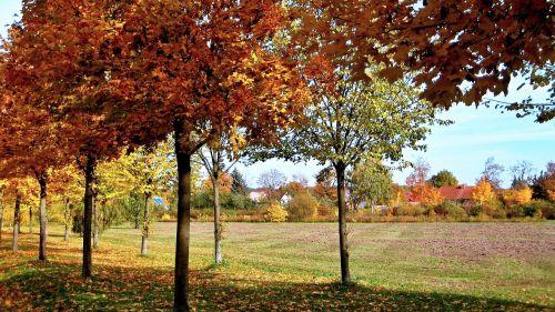 nature autumn landscape germany