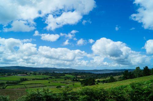 nature green sky