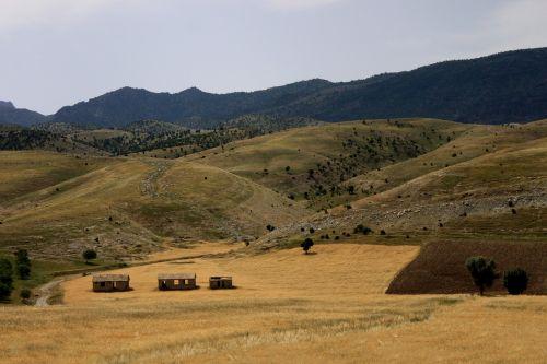 nature mountain steppe