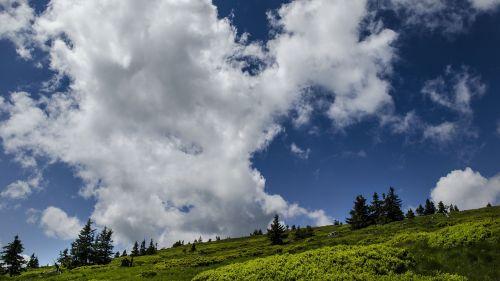 gamta,dangus,debesys,mėlynas dangus,medžiai,oras,dangus